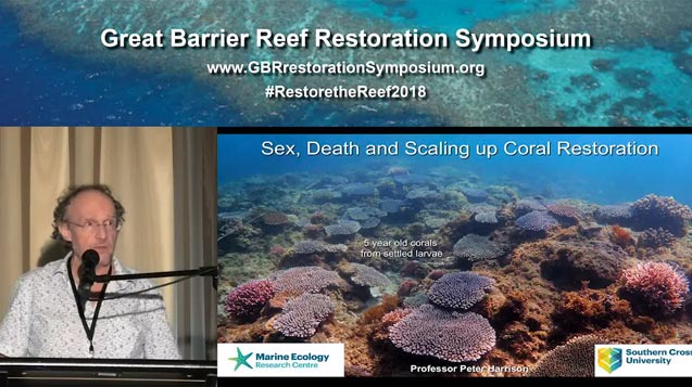 Dr Peter Harrison – sex, death and scaling up coral restoration - video thumbnail